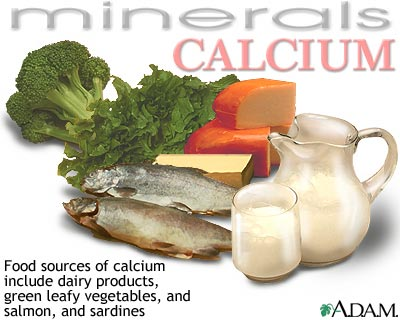 Image result for calcium food sources