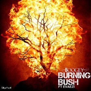 boogeyburningbush1