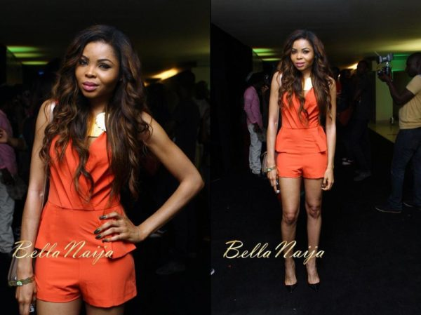 BN Red Carpet Fab Chris Brown Concert Lagos  - December 2012 - BellaNaija02