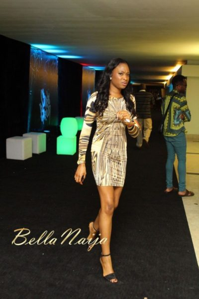 BN Red Carpet Fab Chris Brown Concert Lagos  - December 2012 - BellaNaija261