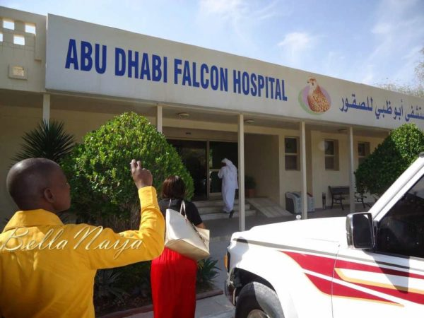 Arrival at the Abu Dhabi Falcon Hospital