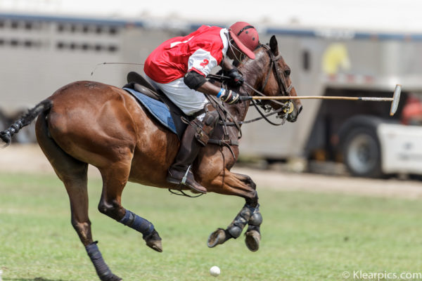Klearpics Polo Photography -_