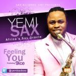 yemisax - feeling You Artcover