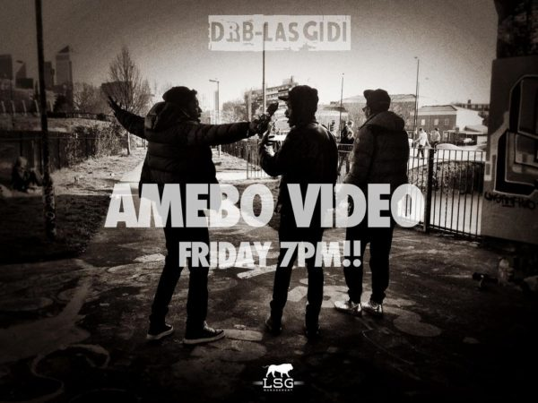 DRB-AMEBOVID