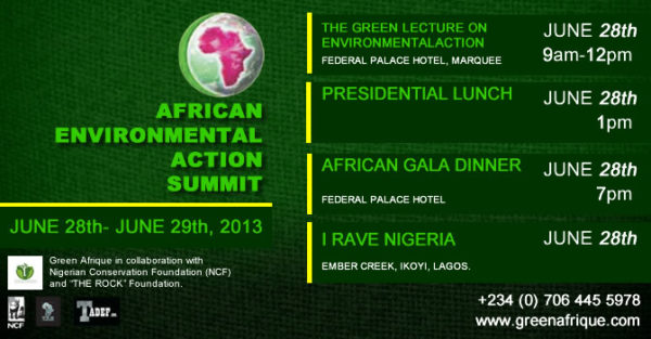 African Environmental Action Summit - BellaNaija - June2013