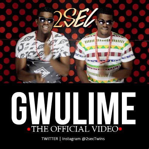 2Sec - Gwulime [Video Poster]