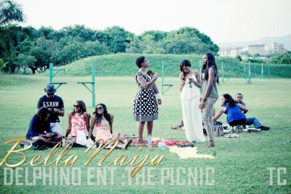Delphino Entertainment Picnic in Abuja - BellaNaija - July2013 (14)