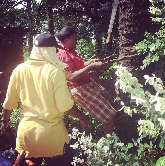Funke Akindele-Oloyede