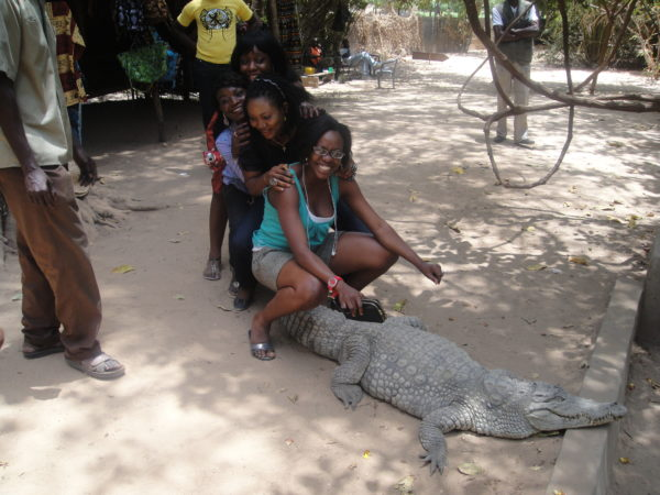 Touch a live crocodile if you dare