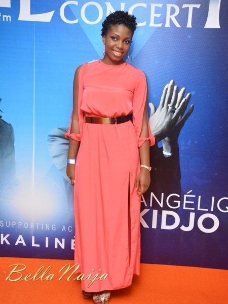 Red Carpet Photos from the Smooth FM Luxury Concert in Lagos - October 2013 - BellaNaija Exclusive015