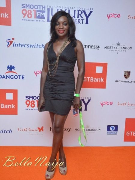 Red Carpet Photos from the Smooth FM Luxury Concert in Lagos - October 2013 - BellaNaija Exclusive019