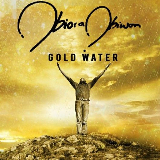 Obiora Obiwon in Gold Water Concert - BellaNaija - November 2013001