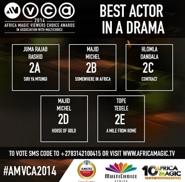 2014 AMVCA - Best Actor in a Drama - Decemeber 2013 - BellaNaija