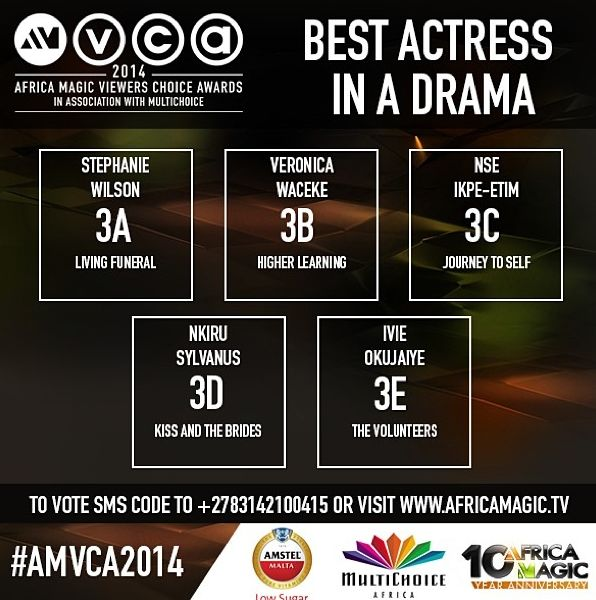 2014 AMVCA - Best Actress in a Drama - Decemeber 2013 - BellaNaija