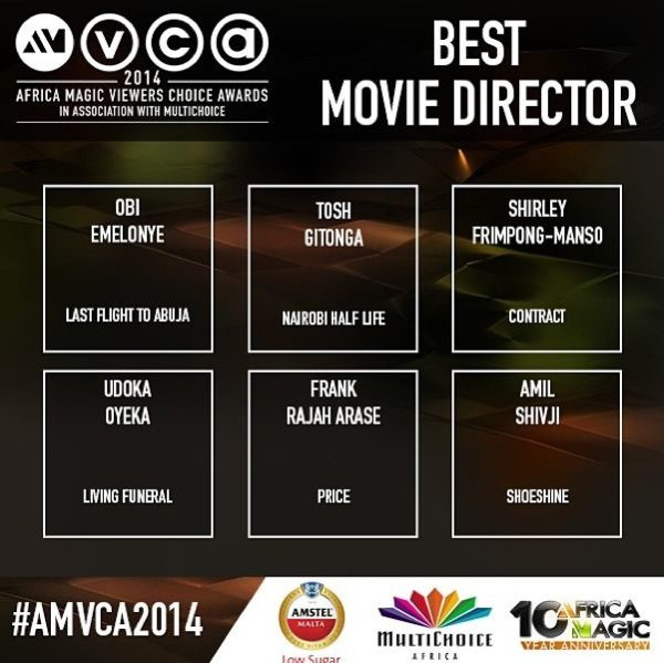 2014 AMVCA - Best Movie Director - Decemeber 2013 - BellaNaija