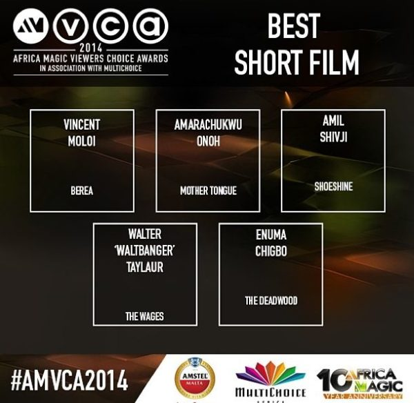 2014 AMVCA - Best Short Film - December 2013 - BellaNaija