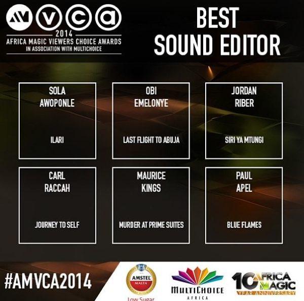 2014 AMVCA - Best Sound Editor - Decemeber 2013 - BellaNaija