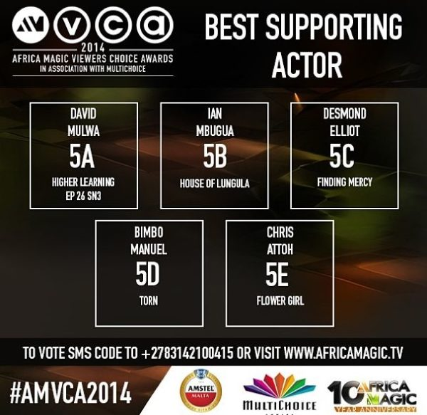 2014 AMVCA - Best Supporting Actor - Decemeber 2013 - BellaNaija