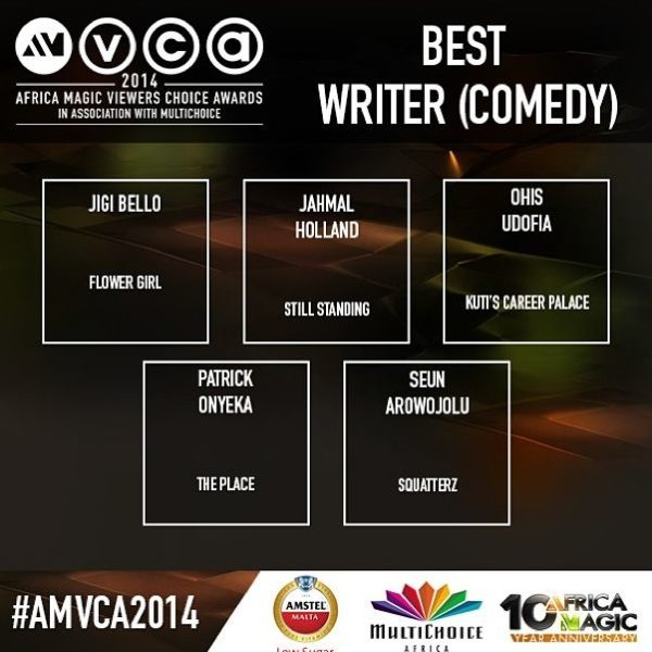 2014 AMVCA - Best Writer - Comedy- Decemeber 2013 - BellaNaija