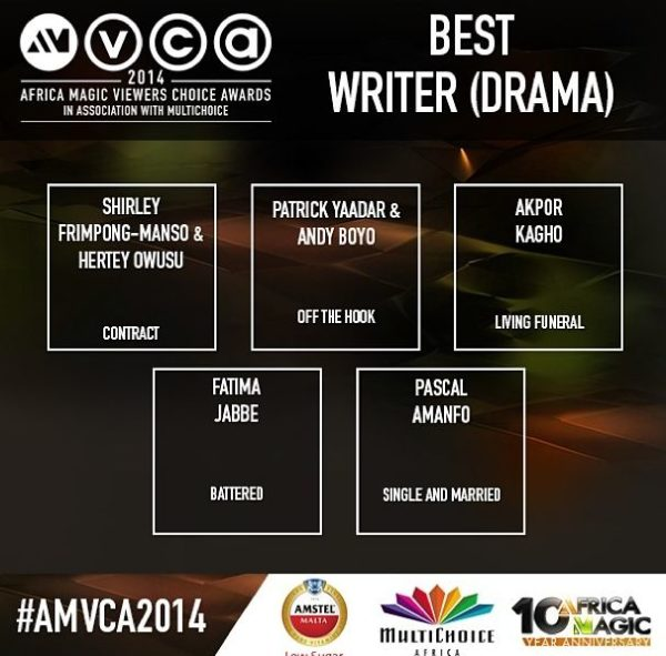 2014 AMVCA - Best Writer - Drama - December 2013 - BellaNaija