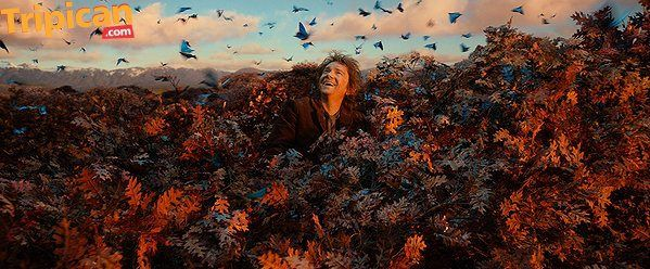 Tripican Movie Featurette The Hobbit - BellaNaija - December 2013006