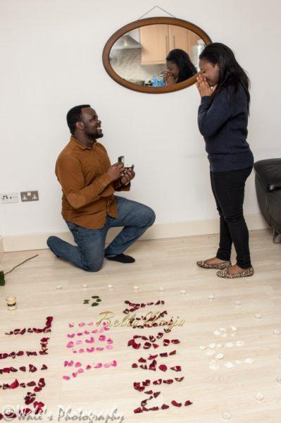 proposal flower petals