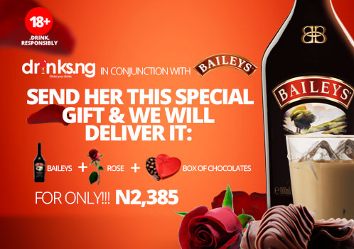 Baileys Spirit With Love Valentine Campaign - BellaNaija - February 2014 (2)
