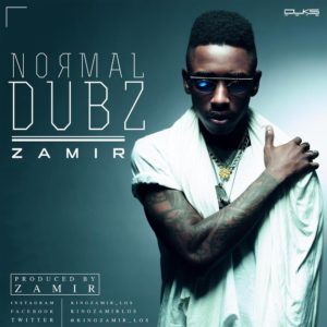NORMAL DUBZ - ZAMIR - BellaNaija - February - 2014