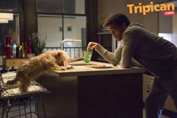 Tripican.com Movie Featurette About Last Night - BellaNaija - February 2014001 (3)