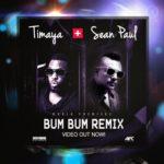 Timaya Feat. Sean Paul - Bum Bum Remix - BellaNaija - April - 2014