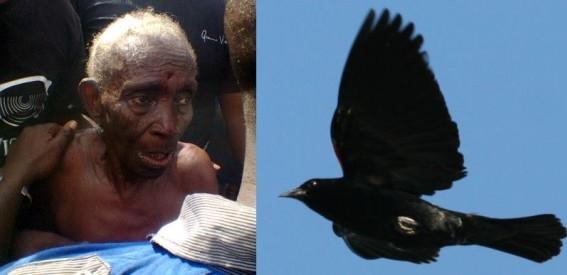 Lagos-woman-turns-into-bird-Bella-Naija