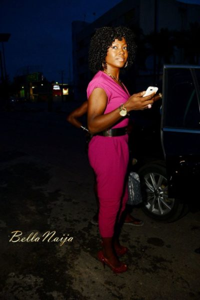 Susan Peters' Birthday Dinner in Lagos - June - 2014 - image006