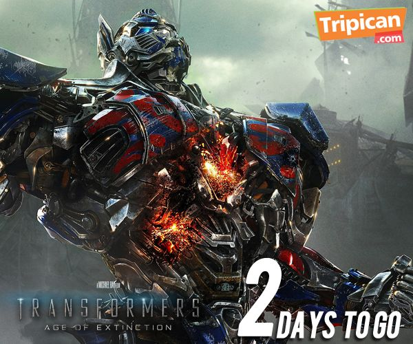 Tripican presents Transformers 4 - Bellanaija - June 20140011