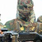 Boko Haram Militant Bella Naija