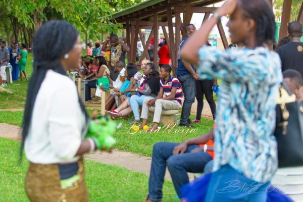 Delphino Entertainment Picnic - Bellanaija - July2014 (3)