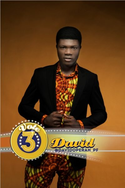 MTN Project Fame West Africa - BN July 2014 - BN Movies & TV - BellaNaija.com 03