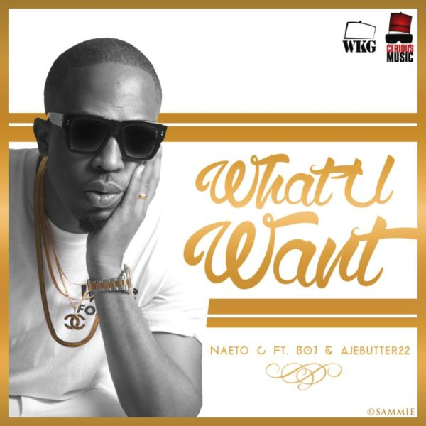Naeto C - What You Want - July 2014 - BN Music - BellaNaija.com 01