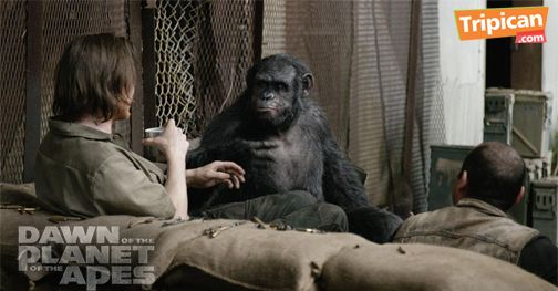 Tripican presents Dawn of the Planet of the Apes - Bellanaija - July2014002