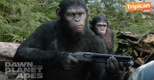 Tripican presents Dawn of the Planet of the Apes - Bellanaija - July2014005