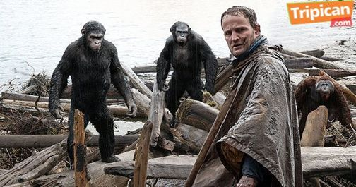 Tripican presents Dawn of the Planet of the Apes - Bellanaija - July2014007