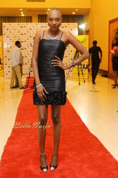 Africa Film Academy Gala in Lagos - August - 2014 - BellaNaija009