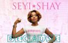 Seyi Shay for Pink Ball 2014 BellaNaija