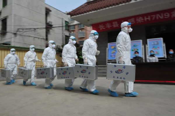 28 H7N9 Bird Flu Cases Confirmed In China