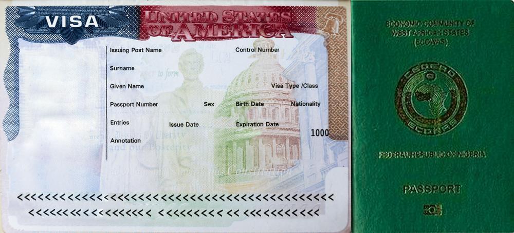 US Embassy In Nigeria Receives 220000 Visa Applications Approves 143000