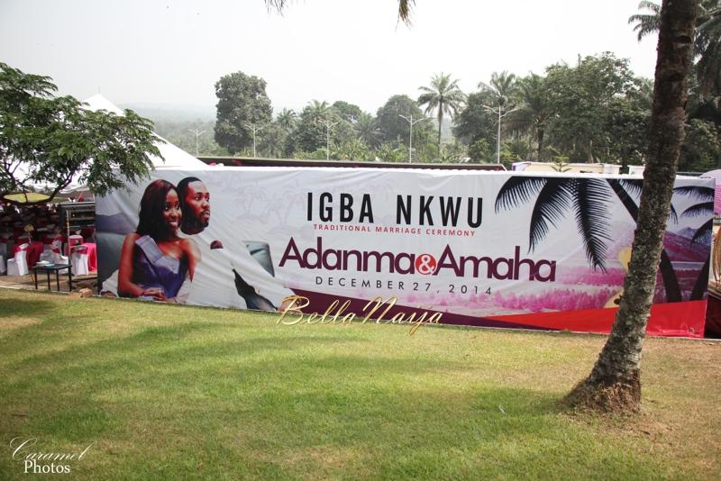 Adanma Ohakim & Amaha Igbo Traditional Wedding in Imo State, Nigeria - December 2014 | BellaNaija.1 (4)