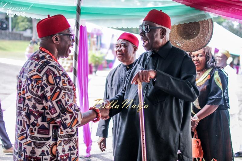 Adanma Ohakim & Amaha Igbo Traditional Wedding in Imo State, Nigeria - December 2014 | BellaNaija.1 (41)