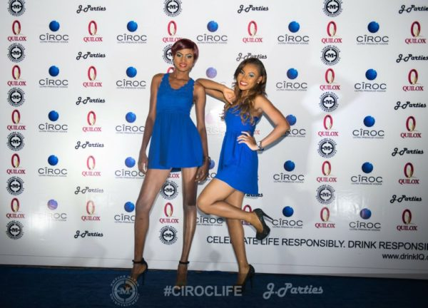 J Parties Ciroc Life 2014 Finale - Bellanaija - January2015026