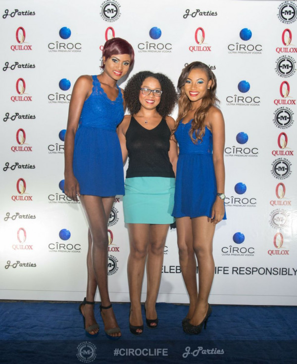 J Parties Ciroc Life 2014 Finale - Bellanaija - January2015032