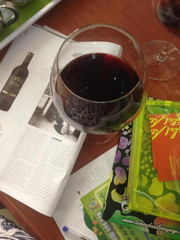 Torres Gran Coronas Wine Campaign Shoot with Kelechi Amadi-Obi - BellaNaija - January 2015005