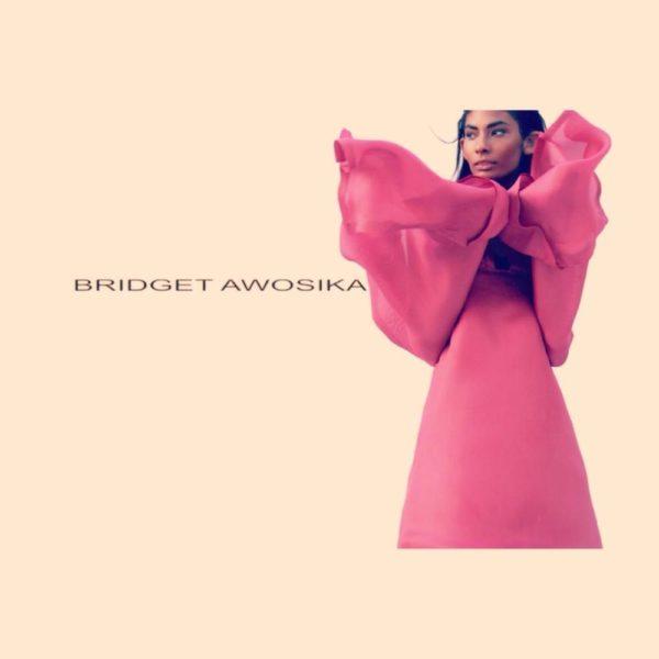 Bridget Awosika Pre 2015 Collection - BellaNaija - February 20150045